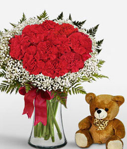 Joy-Red,Carnation,Teddy,Bouquet