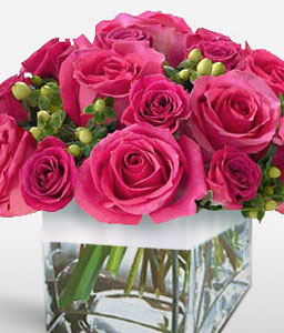 Color Up-Pink,Rose,Arrangement