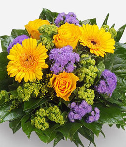 Fabrice-Green,Purple,Yellow,Daisy,Gerbera,Rose,Bouquet