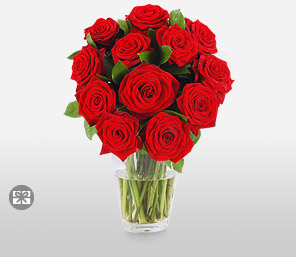 One Dozen Red Roses-Red,Rose,Arrangement