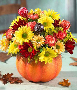 Halloween Celebrations-Orange,Red,Daisy,Gerbera,Arrangement