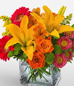 Pop Art-Green,Yellow,Red,Pink,Orange,Mixed,Chrysanthemum,Gerbera,Lily,Rose,Arrangement