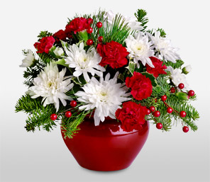Xmas Treasure-Red,White,Lily,Rose,Arrangement,Basket