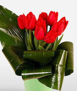 Tulip Love-Red,Tulip,Arrangement