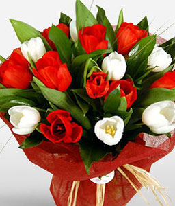 Romantic Gift-Red,White,Tulip,Bouquet