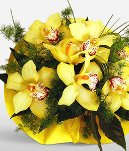 Sunshine-Yellow,Orchid,Bouquet