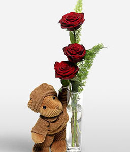 Elegant Romance-Red,Rose,Teddy,Bouquet,Soft Toys