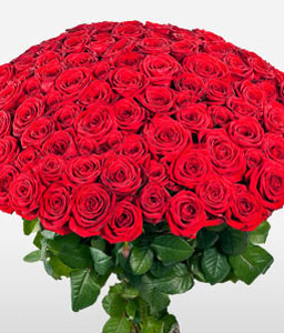 Hot Hundred-Red,Rose,Bouquet