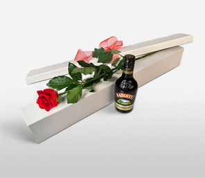 Single Rose With Baileys-Red,Rose,Bouquet,Hamper