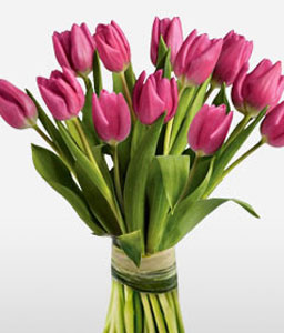 Tulips Kingdom-Lavender,Pink,Tulip,Bouquet