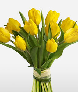 Happiness Tulips-Yellow,Tulip,Bouquet