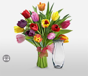 Tulip Sensation-Mixed,Orange,Pink,Red,Yellow,Tulip,Bouquet