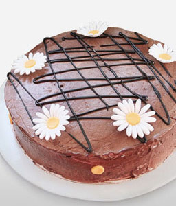Chocolate Delight Cake - 35oz/1kg-Chocolate,Gourmet,Cakes