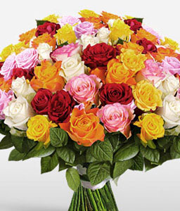 50 Mixed Colored Roses-Mixed,Orange,Pink,Red,Yellow,Rose,Bouquet