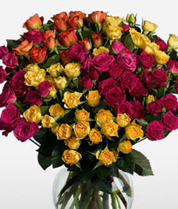 Rainbow 18 Long Stem Roses-Pink,Red,Mixed,Yellow,Orange,Rose,Arrangement