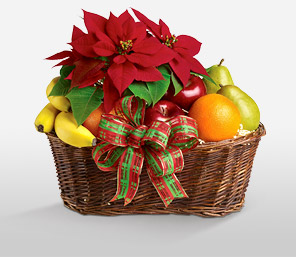 Fruity Christmas-Red,Fruit,Poinsettia,Basket