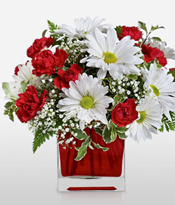 Red And White Delight-Red,White,Chrysanthemum,Gerbera,Arrangement,Bouquet