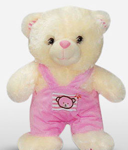 Sesame Streets Elmo Teddy Gift-Pink,Teddy Bear,Soft Toys,Gifts