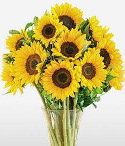 Sunshine Smile-Yellow,SunFlower,Arrangement