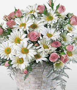 Garden Beauty-Peach,Pink,White,Daisy,Gerbera,Rose,Arrangement,Basket
