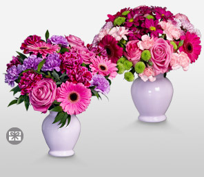Simply Delightful-Green,Mixed,Pink,Red,Carnation,Daisy,Gerbera,Rose,Arrangement