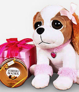 Jack Russell-Chocolate,Soft Toys,Gifts