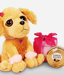 Fancy Dog-Chocolate,Soft Toys,Gifts