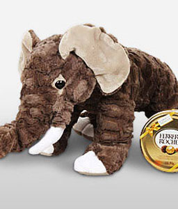 Elephant-Chocolate,Soft Toys,Gifts