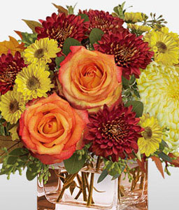 Subtly Sensational-Mixed,Orange,Red,Yellow,Chrysanthemum,Daisy,Rose,Arrangement