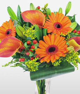 Vibrant Extravaganza-Green,Orange,Gerbera,Lily,Bouquet