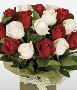 Romantico - 18 Red & White Roses-Red,White,Rose,Arrangement