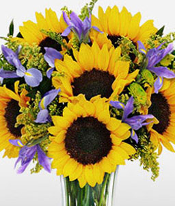 Cheerful Sunflowers-Purple,Yellow,SunFlower,Arrangement