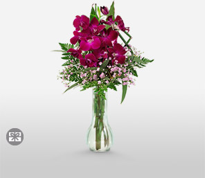 Mulberry-Purple,Orchid,Arrangement