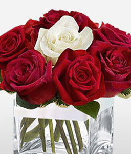 11 Red and 1 White Roses In Cube Vase-Red,White,Rose,Arrangement