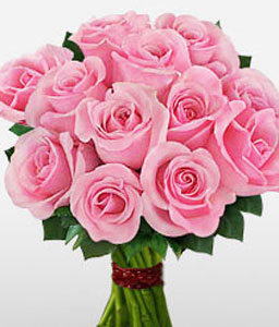 1 Dozen Pink Roses Bouquet-Pink,Rose,Bouquet