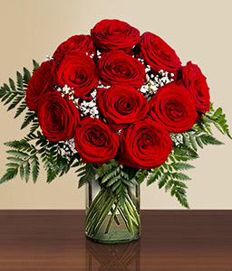 1 Dozen Red Roses In Vase-Red,Rose,Arrangement