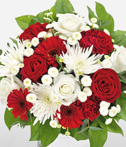 Dawning Glory-Green,Red,White,Carnation,Gerbera,Rose,Arrangement,Bouquet