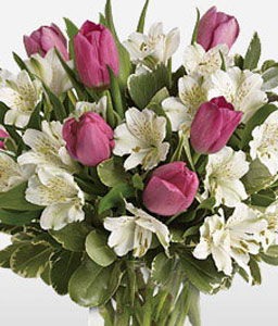 Sweet Notions-Pink,White,Alstroemeria,Tulip,Arrangement,Bouquet