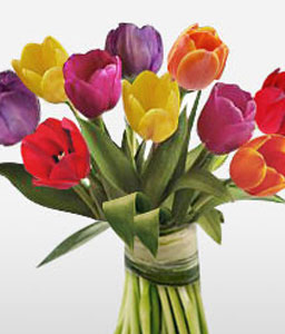 Colorful Tulips-Mixed,Tulip,Bouquet