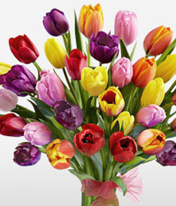 35 Colorful Tulips-Mixed,Tulip,Bouquet