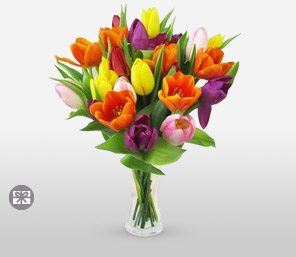Tulip Sensation-Mixed,Orange,Pink,Purple,Red,Yellow,Tulip,Arrangement