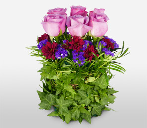 Millions De Sentiments-Green,Violet,Lavender,Pink,Purple,Rose,Arrangement