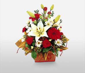 Lot Like Christmas-Red,White,Carnation,Daisy,Gerbera,Lily,Bouquet