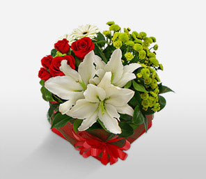 Christmas Surprise-Green,Mixed,Red,White,Chrysanthemum,Lily,Mixed Flower,Rose,Arrangement