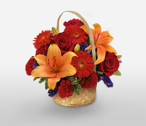 Vibrant Christmas-Orange,Red,Carnation,Gerbera,Lily,Rose,Arrangement,Basket