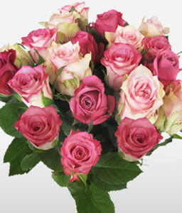 Bunch Of Pink Roses in Vase