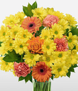 Jubilations<Br><span>Bright Germinis with Roses & Carnations</span>