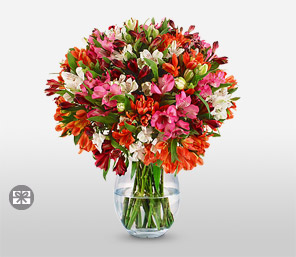 Luxurious Blooms <Br><Font Color=Red>Multi Color Bouquet</Font>