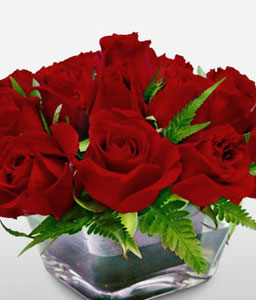 Royal Magic-Red,Roses,Vase,Anniversary,Fillers