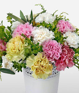 Happy dreams-Colorful,Carnations,Pot,Pink,Yellow